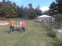 13 septembre, après-midi à la ferme. Nous avons fait du jus multifruits avec l'extracteur de Sarah! Et Kévin a fait du jus de maïs!
