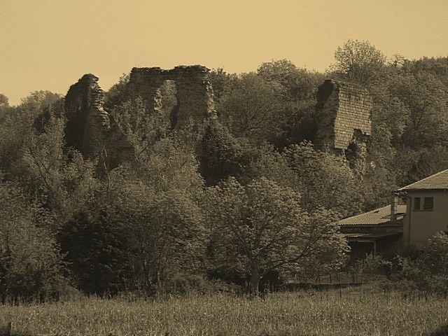 Diaporama château de Salt-en-Donzy