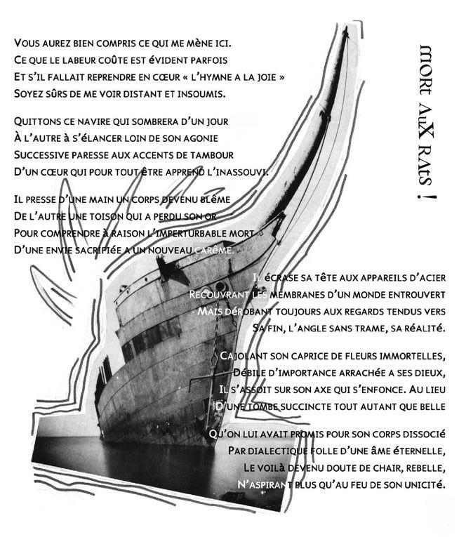 Album - Poésie visuelle. Vincent Delhomme