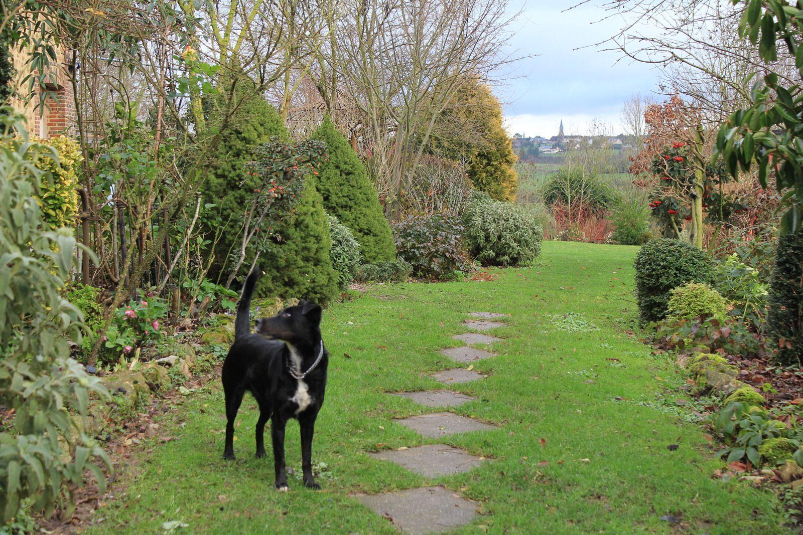 Ce cliché du jardin pourrait être le profil du jardin celui que l'on pourrait reconnaitre entre les autres sans le confondre, mportant de pouvoir définir son profil