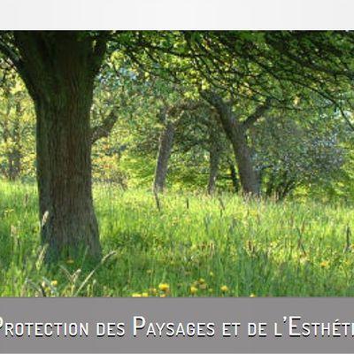 Derniers articles parus de la société pour la protection des paysages et de l'esthétique de la France.