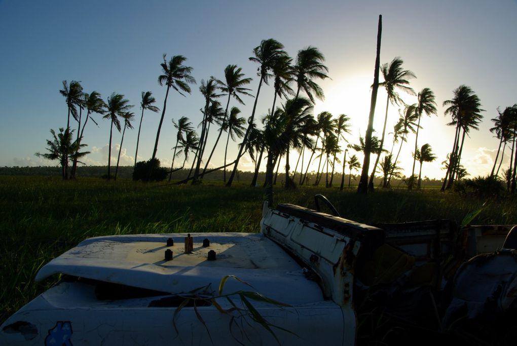 Un mois de vadrouille au Mozambique en Janvier 2010!!