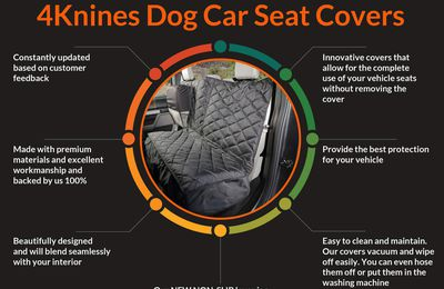 Benefits Of 4Knines Dog Seat Covers [Infographic]