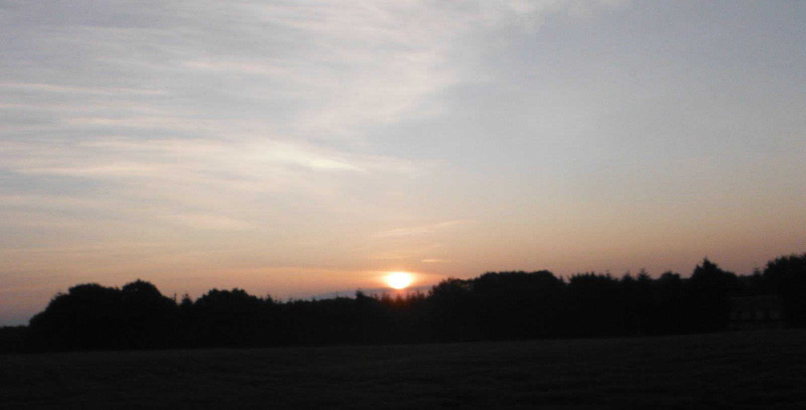 Le soleil se lève. Il est à peine 9 heures entre Plémet et Coëtlogon.