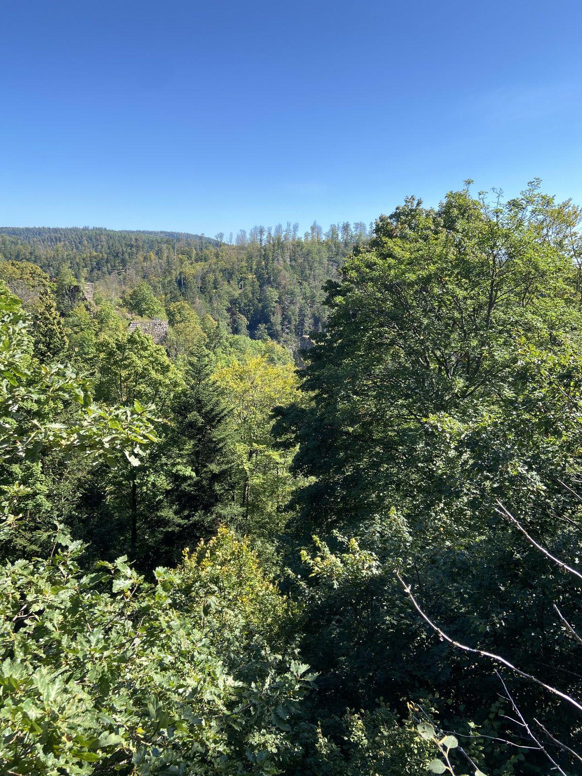 Autour de la cascade du Nideck