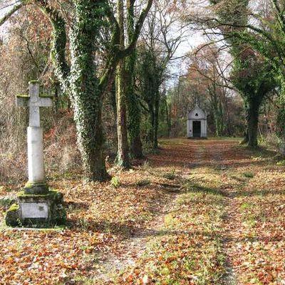 Le pèlerinage de Benoîte-Vaux (6)
