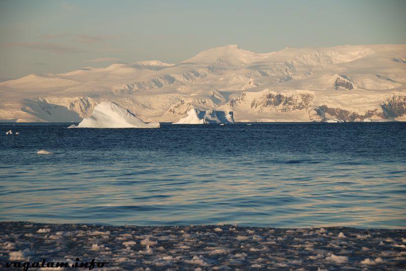 Album - Antarctique