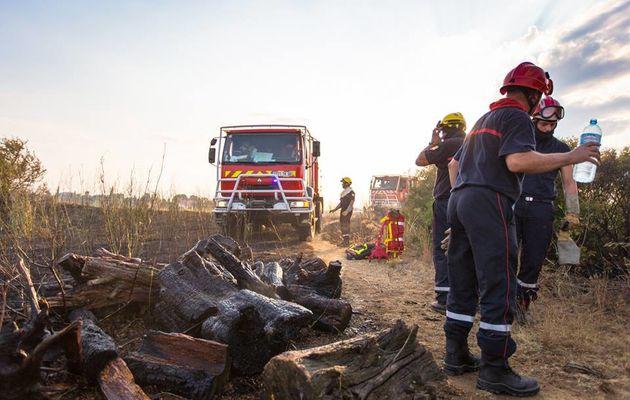 Perpignan (66) - 7 hectares de végétation partent en fumée