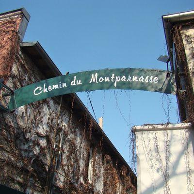 Le chemin du Montparnasse