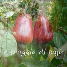 """""""Pioggia di caju"""" - Andhira e Marcia Theophilo"""