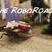 The RoboRoach: Control a living insect from your smartphone!