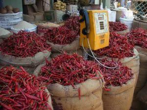 De la cuisine végétarienne en Inde du sud