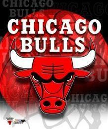 the basket de chicago bulls !