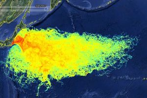 Fukushima : vers une contamination planétaire ?