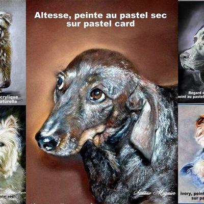 Offrez-vous le portrait de votre animal préféré !