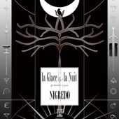 La Glace et la Nuit opus I - Nigredo (roman)