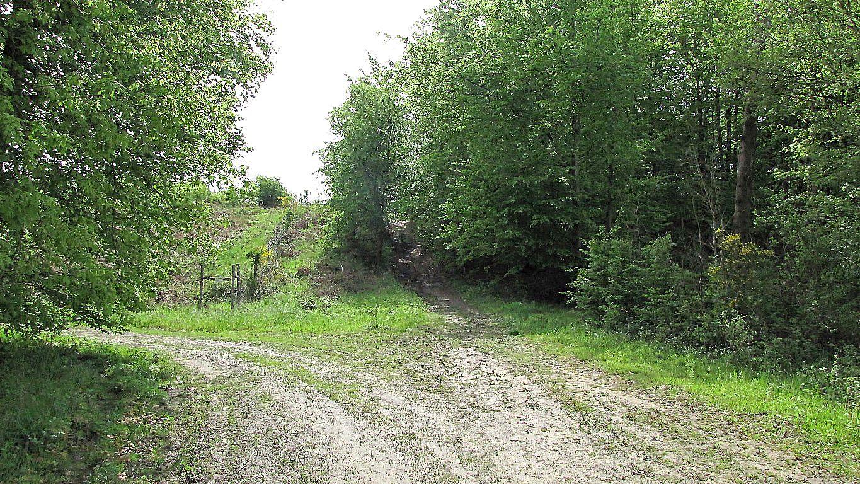 carrefour_Route du Grand Octogone_Chemin du Pont l'Echo