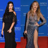 See All The Red Carpet Looks From The 2015 White House Correspondents' Dinner