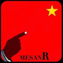 CENTRAFRIQUE: Communiqué du MESAN RÉFORMÉ