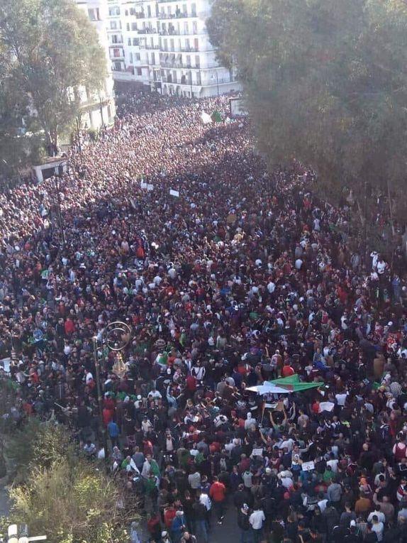 Algérie: Une manifestation historique a fait 1 mort et une dizaine de blessés