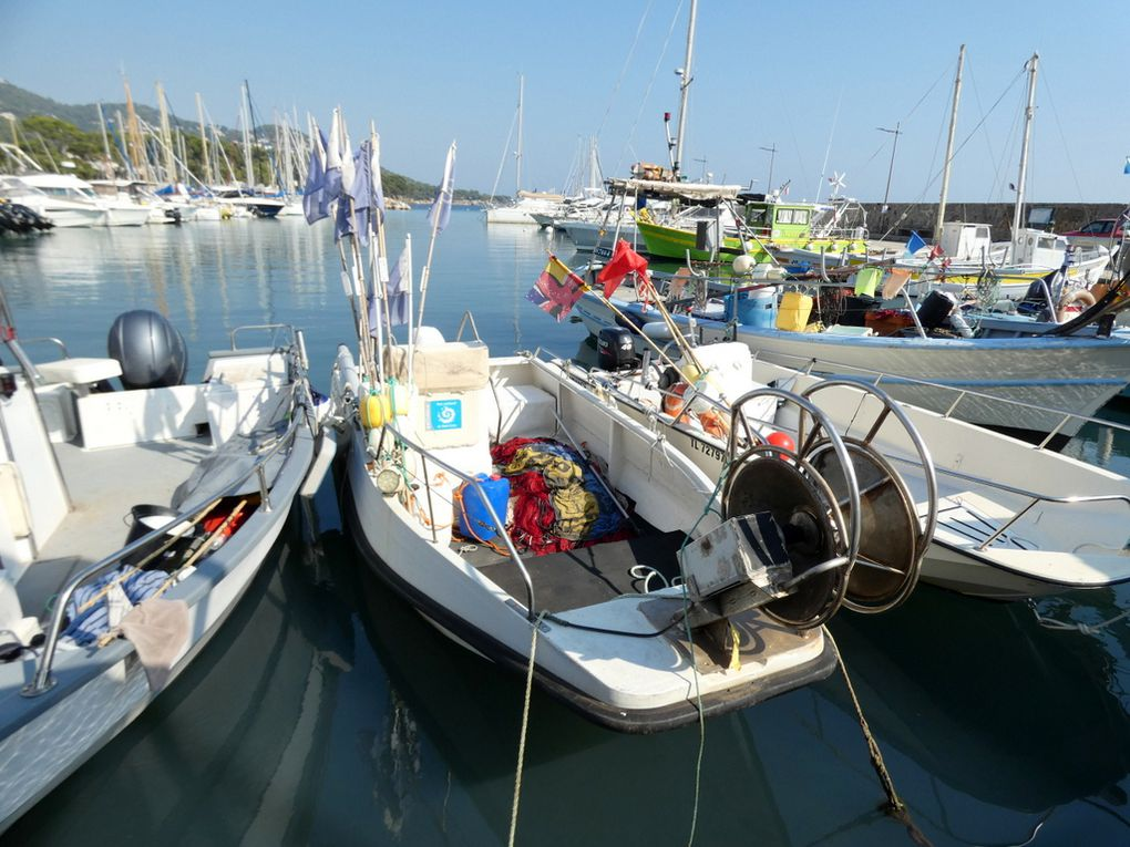 SEA FOOD  , TL 552815 , a quai dans le port de Carqueiranne (83) le 17 septembre 2020