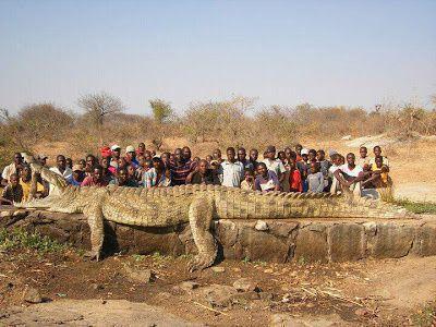 Madre e hija mueren por ataque de cocodrilos en Angola.