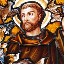 Fête de saint François d'Assise - Homélie