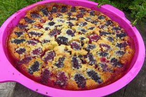 EXQUIS AUX MURES (thermomix)