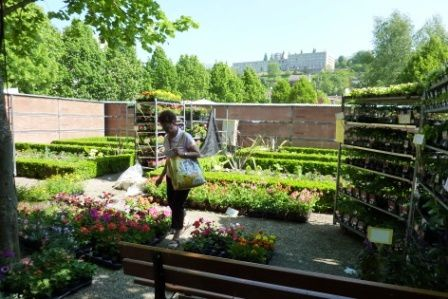 Album - Marché aux plantes et marché bio mai 2010