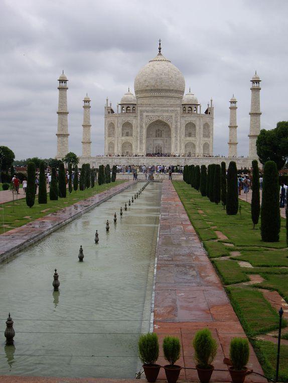 Découverte de l'Inde après de longues années d'envie... départ pour une mission humanitaire... un pays magnifique, pleins de belles rencontres et de souvenirs inoubliables...