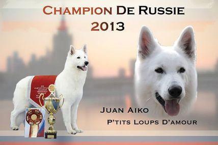 1 titre de plus pour Juan Aiko p'tits loups d'amour
