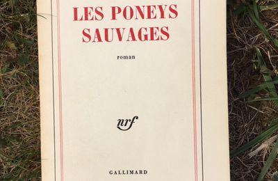 Michel Déon, Les Poneys sauvages