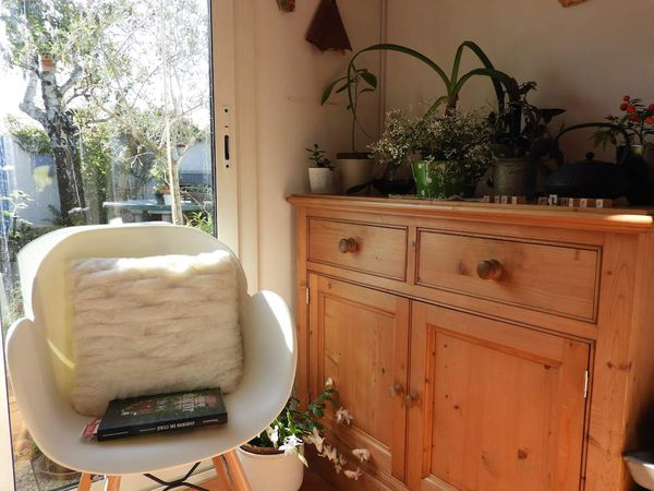 * Urban Jungle Bloggers *  Plants and Words