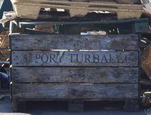 La Turballe - Des news 29 - Un tour sur le port