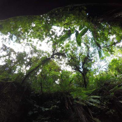Vanuatu - Partie 3 - Espíritu Santo (Millenium Cave)
