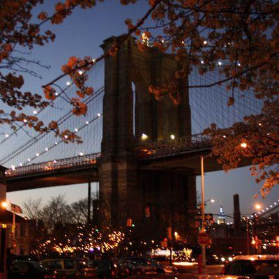 New York City, Bon à Savoir #27