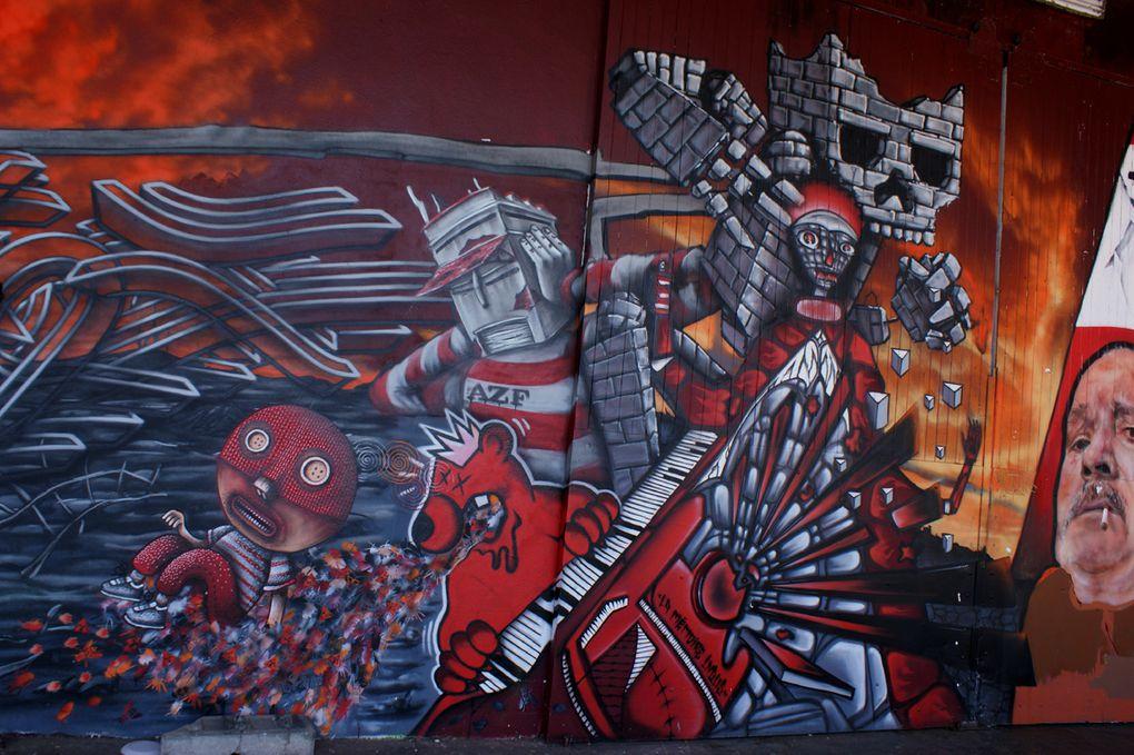 Album - Graffitis-Toulouse-tom-002
