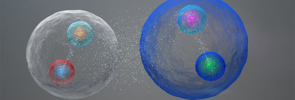 The Reign of Bubbles and Particles