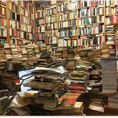 La bibliomanie ou la syllogomanie des livres -- Sott.net