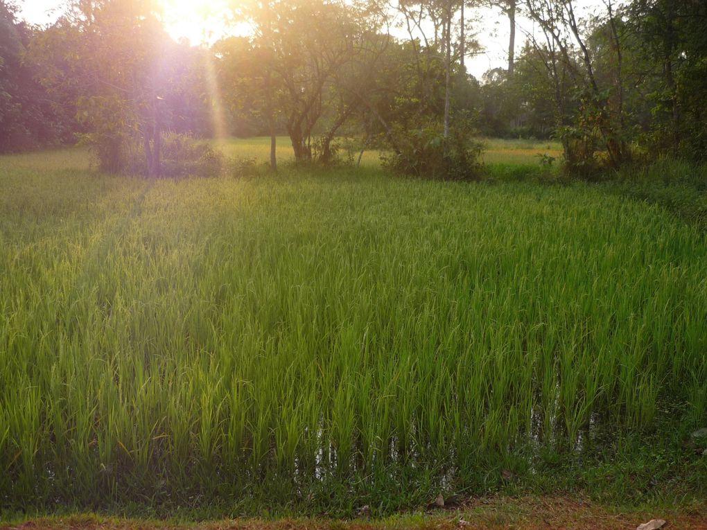 Album - 0-22-Angkor