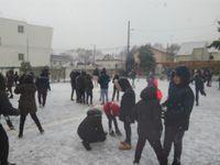 Les Cahouettes sous la neige