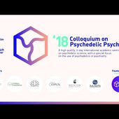 Marc Aixalà: Integration of a Difficult Psilocybin Experience in a Clinical Trial. A Case Study