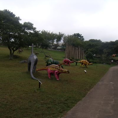 Dino park !