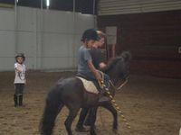 Stage Théatre Equestre Voltige (15/07-19/07)