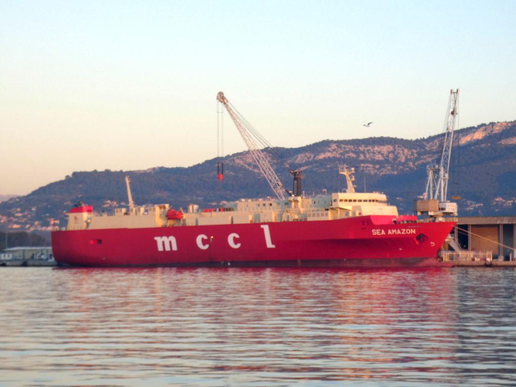 SEA AMAZON , a quai dans le port de Toulon / Brégaillon le 06 janvier 2020