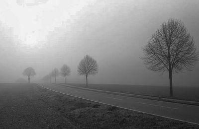 JUIN en septembre, Tour de France, les 24 Heures, l'audience fonce vers le brouillard...