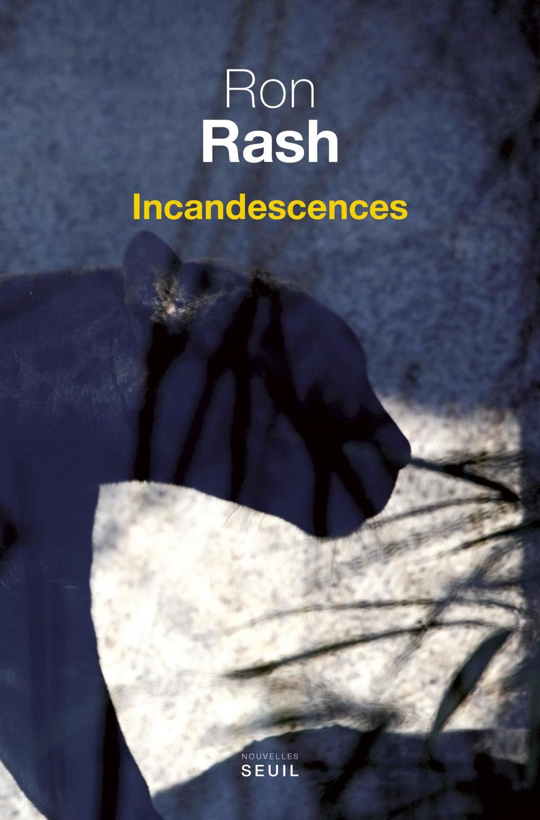 Incandescences - Ron RASH (Burning Bright, 2010), traduction de Isabelle RAINHAREZ, Seuil collection Cadre vert, 2015, 208 pages