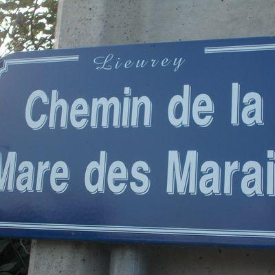 Chemin de la Mare des Marais (27560 Lieurey)