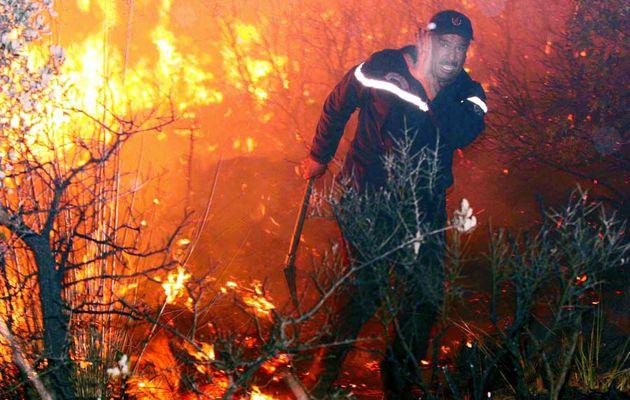 L'Algérie a enregistré ces dernières 24 heures 66 feux de forêt dans 20 wilayas du pays.