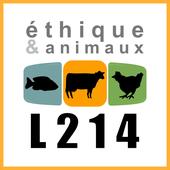Le calvaire des cochons de l'abattoir de Houdan (Yvelines)